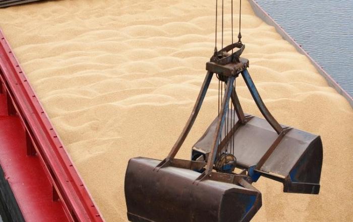 Dry bulk cargoes